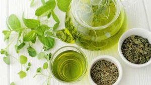 green tea has an antioxidant EGCG